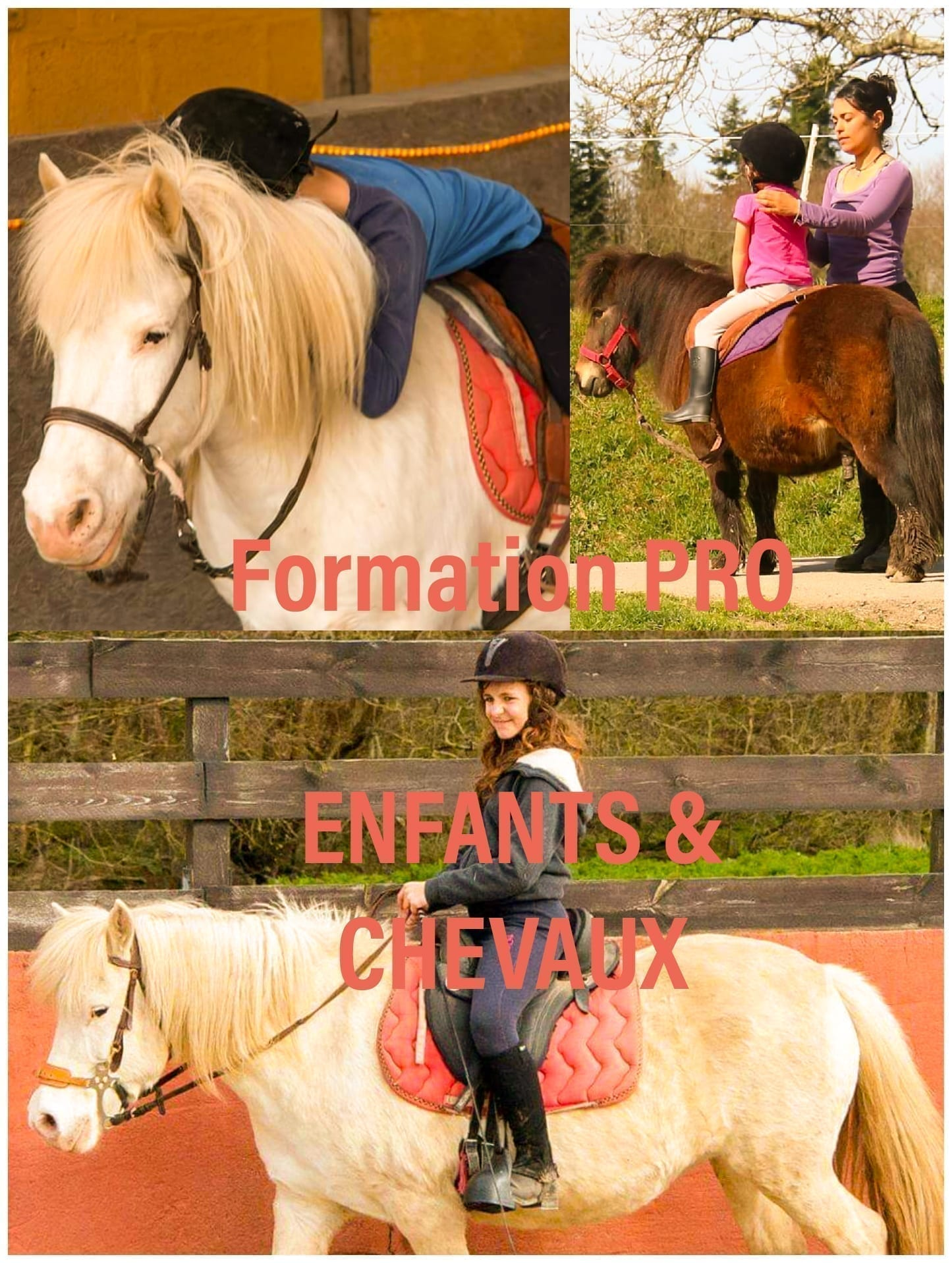 enfants et chevaux.jpg
