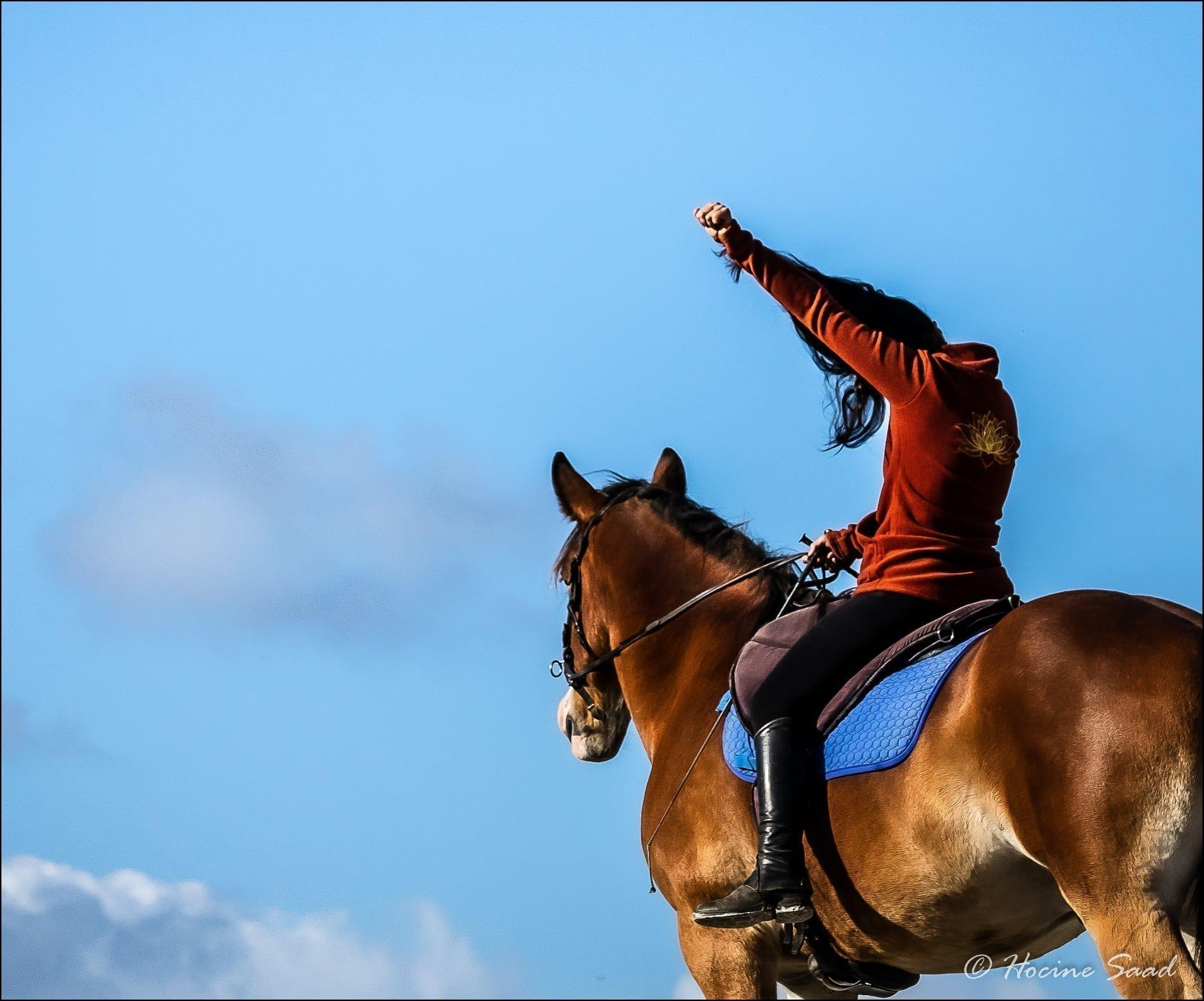 cheval peur courage équitation émotion